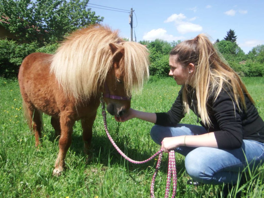 horse assisted coaching kinder und jugendliche