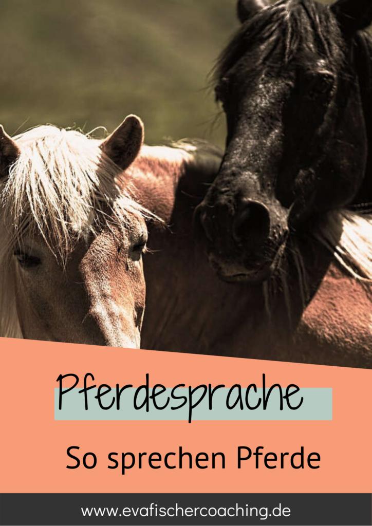wie pferde sprechen