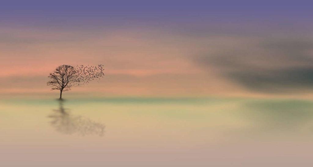 Meditationslandschaft