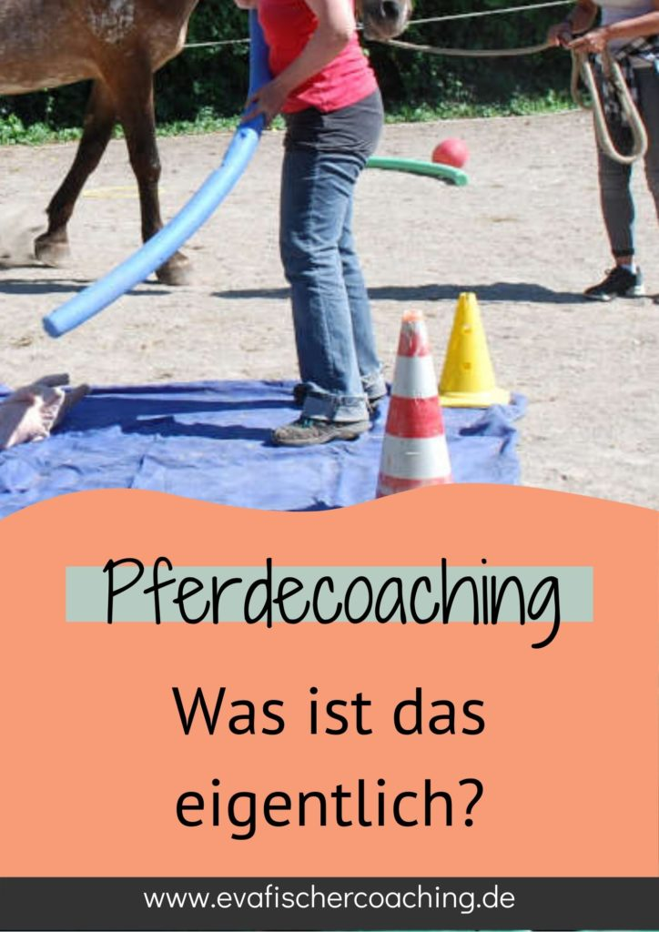 was ist pferdecoaching