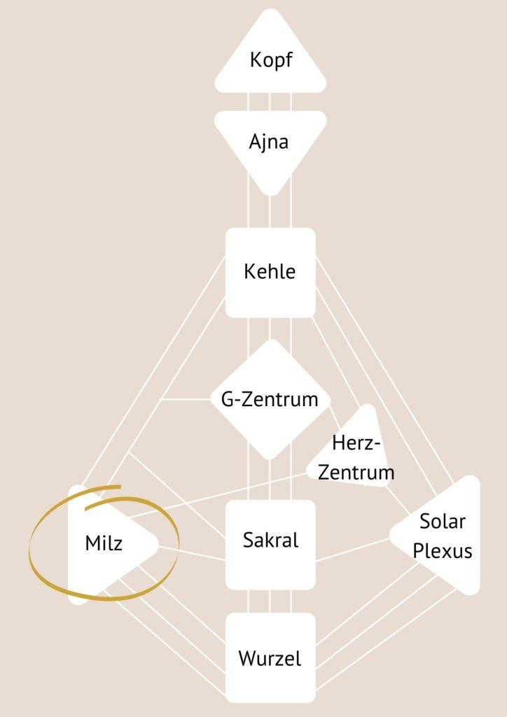 Milz-Zentrum - Zentren im Human Design