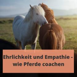 Pferde coachen mit Ehrlichkeit und Empathie