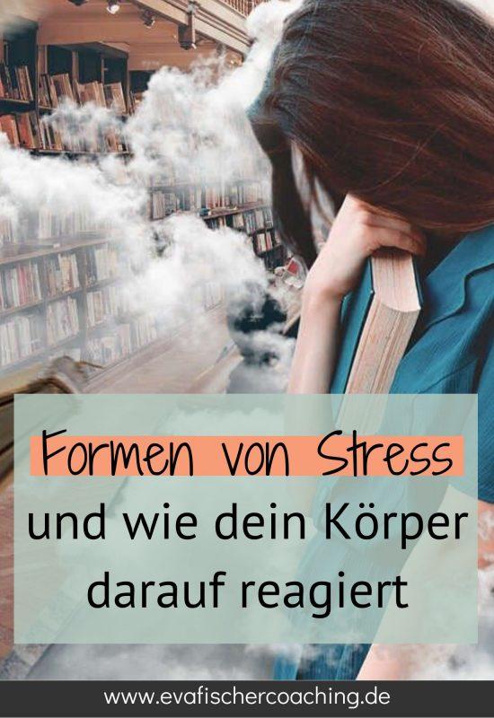 Stressreaktionen - Formen von Stress