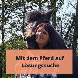 Pferdecoaching - Loesungssuche mit Pferd